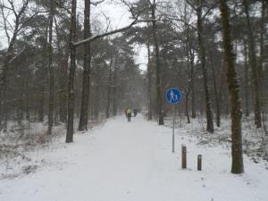 Met dikke vlokken sneeuw onderweg, verplicht hand in hand lopen.